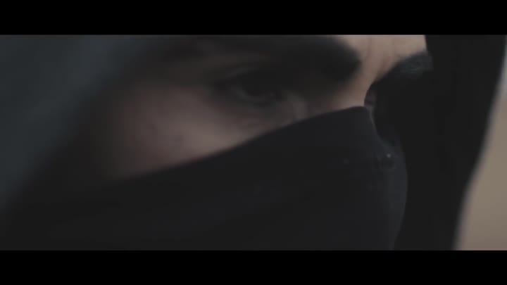 Alan Walker - Faded (Official Video)