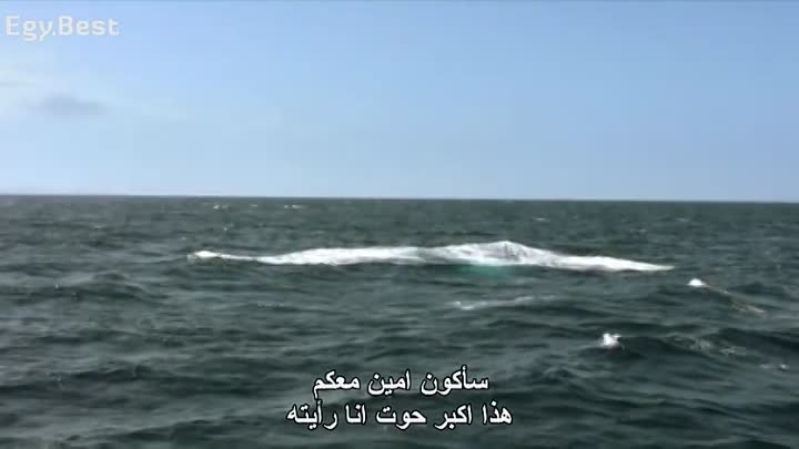 2010.Moby.Dick.2010.DVDRip.cima4up.tv