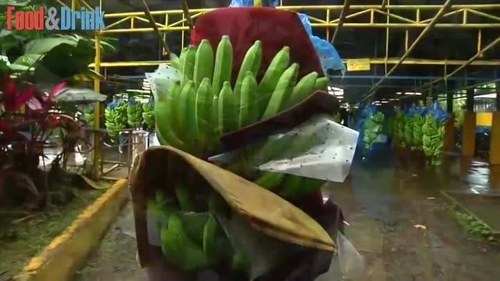 How it's made - Banana