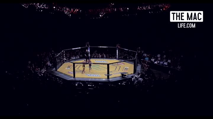 THIS IS THE MAC LIFE UFC 200 #TheMacLife