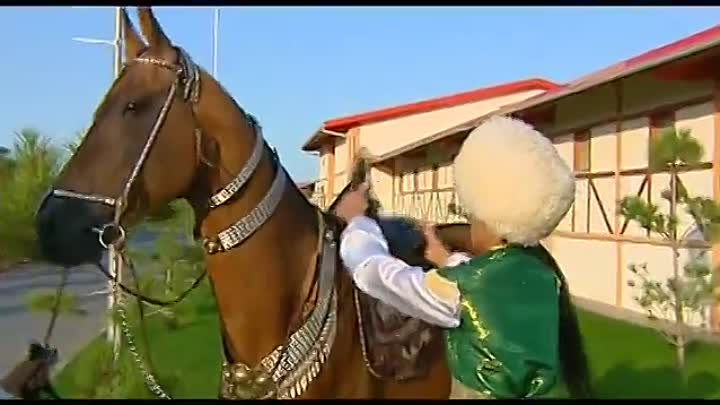 Видео: Ахалтекинская порода лошадей - Золотые Лошади -The Akhal-Teke horse breed - Golden Horses