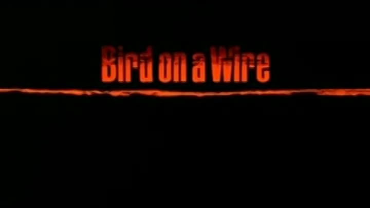 Neville Brothers _Bird On A Wire_