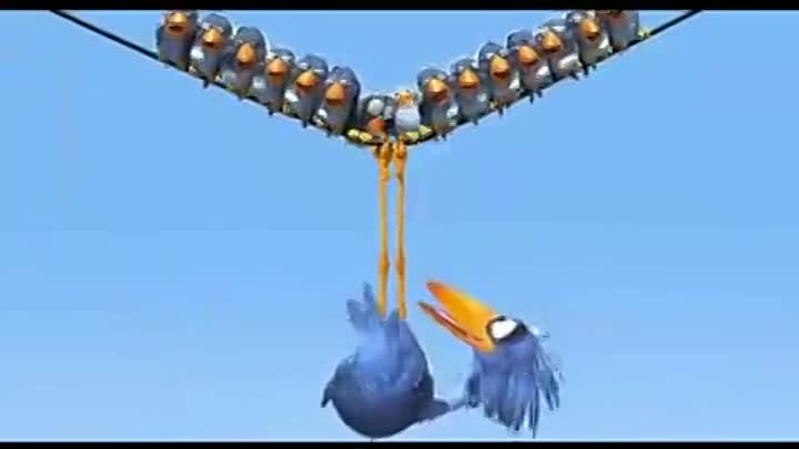 For the birds 1080p HD