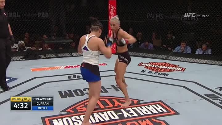 The Ultimate Fighter 24 Finale: Preliminary Card (03.12.2016) Предварительные