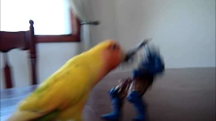Axe-Wielding Bird ATTACKS!