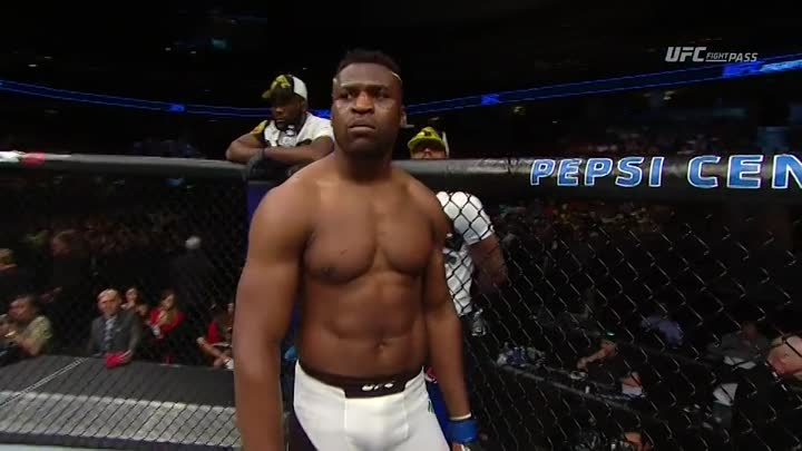 Андрей Орловский - Фрэнсис Энганну (28.01.2017) UFC on FOX 23 Andrei Arlovski vs. Francis Ngannou
