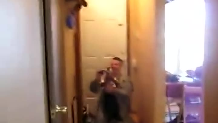 Видео: Two Dogs Welcome Home Soldier - So Cute!