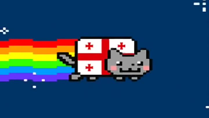 Видео: Georgian NYAN CAT!