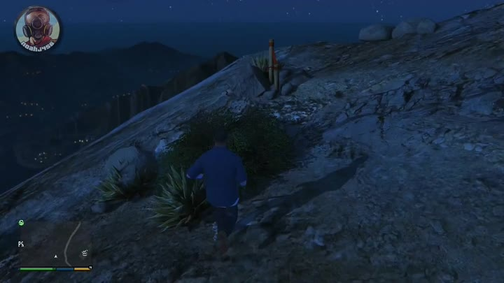 """GTA 5 - """"PLAY AS A SEAGULL"""" - Easter Egg Tutorial Guide (Peyote Locations) (GTA V Next Gen PS4)"""