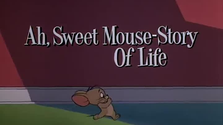 Tom and Jerry Classic Episode 134 – Ah, Sweet Mouse Story of Life Watch Cartoons Online Free - Cartoons is not just for the kids