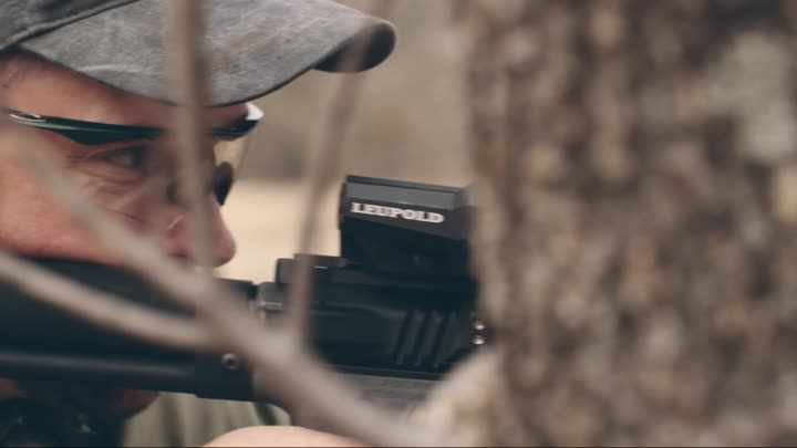 Видео: Leupold D-EVO™: Dual-Enhanced View Optic