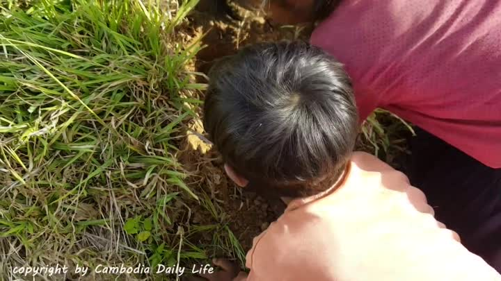 Terrifying!! Little Sister And Brother Catch Two Big Snakes From Hole (Part 4)