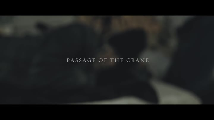 Видео: HEAVEN SHALL BURN - Passage Of The Crane (OFFICIAL VIDEO)