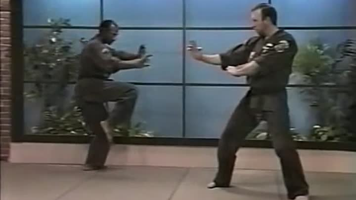 Видео: Kenpo Karate Ed Parker American Kenpo Sophisticated Basics Vol[Low,640x360]