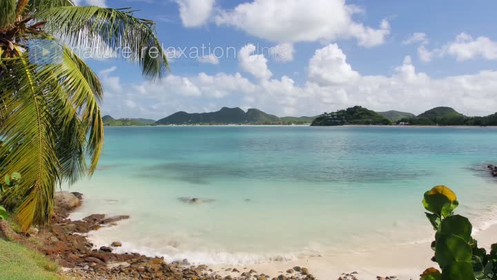 Видео: A Day in the Caribbean 4K 3.5 HR Nature Relaxation Ambient Film