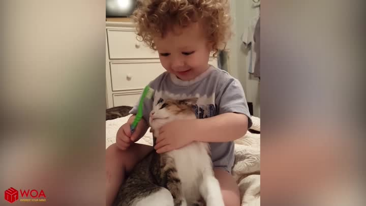 Sweet Moments Between Babies and Cats #2| Top Cats Video Compilation
