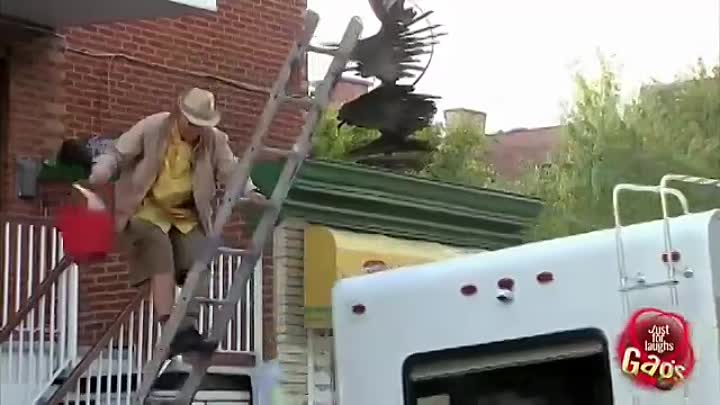 Видео: Best of Just For Laughs Gags - Defying Gravity Insane Pranks
