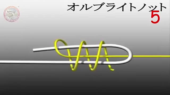 Top 9 Fishing Knot