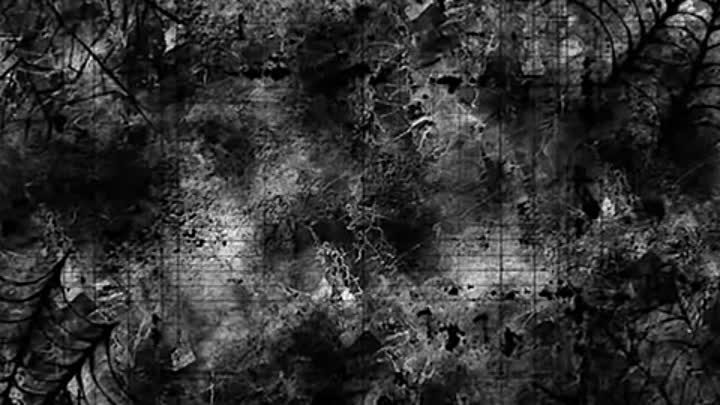 Distorted-Memory---Confession-[WikiBit.me]