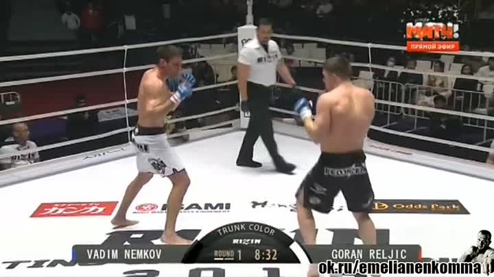 Вадим Немков vs. Горан Релжич. Rizin Fighting Federation 1. 29 декабря 2015