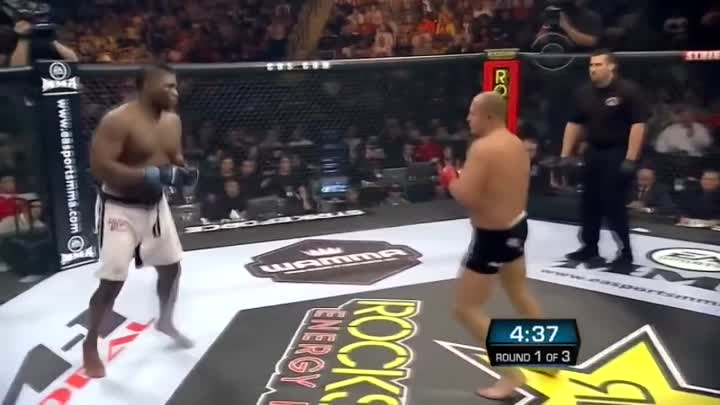 Fedor Emelianenko vs Brett Rogers (Strikeforce)